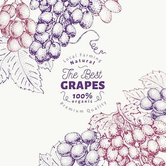 Plantilla de diseño de uva baya. dibujado a mano vector ilustración de fruta. grabado estilo retro de fondo botánico.