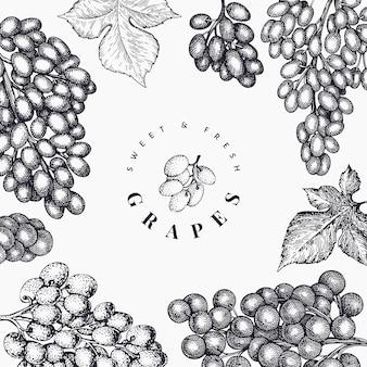 Plantilla de diseño de uva. dibujado a mano ilustración de baya de uva. estilo grabado retro botánico.