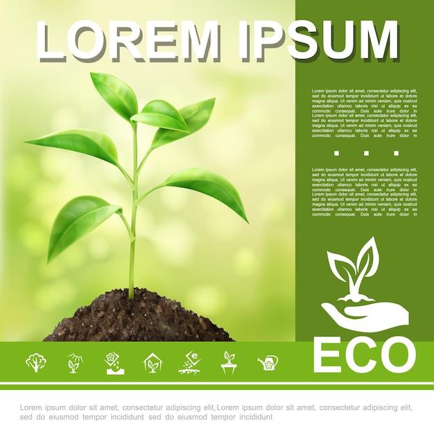 Plantilla ecológica y natural realista con mano de planta en crecimiento que sostiene el logotipo de brote ecológico y la ilustración de iconos de ecología