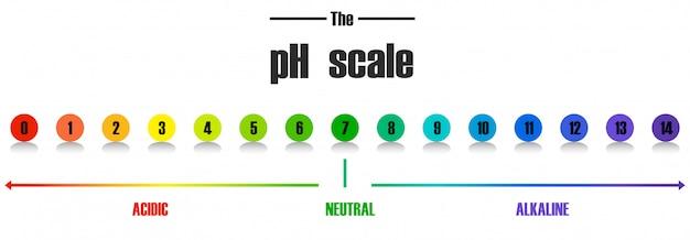 Plantilla de escala de ph de ciencia