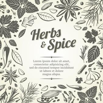 Plantilla de especias orgánicas y frescas
