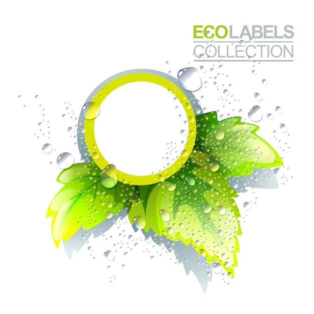Plantilla de etiqueta ecológica