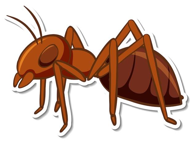 Una plantilla de etiqueta con hormiga roja aislada