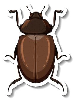 Una plantilla de etiqueta con vista superior de un escarabajo aislado