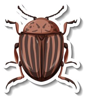Una plantilla de etiqueta con vista superior del escarabajo de la patata de colorado aislado