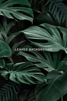Plantilla de fondo de hojas verdes naturales