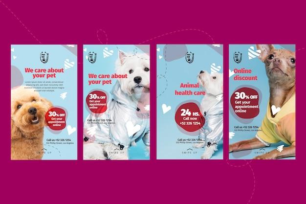 Plantilla de historias de instagram de veterinaria de mascotas