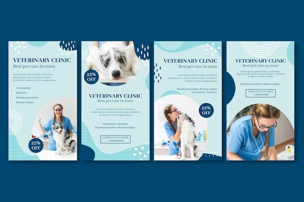 Plantilla de historias de instagram veterinarias