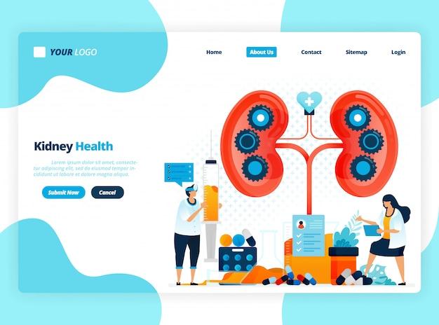 Plantilla de ilustración de página de destino para comprobar la salud del riñón. enfermedades y trastornos del riñón. control y manejo de órganos internos