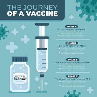 Plantilla de infografía de fases de vacuna de coronavirus