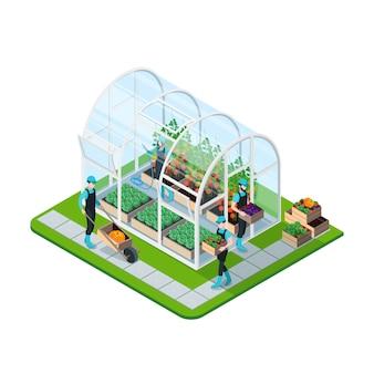 Plantilla isométrica de invernadero de vidrio