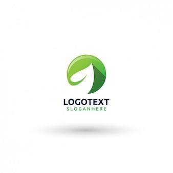 Plantilla de logo de hoja vector gratuito