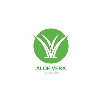 Plantilla de logotipo de aloevera
