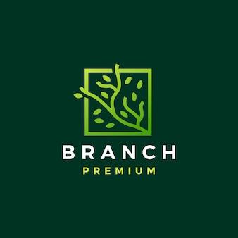 Plantilla de logotipo de árbol de hoja cuadrada de rama de árbol