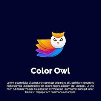 Plantilla de logotipo colorido búho