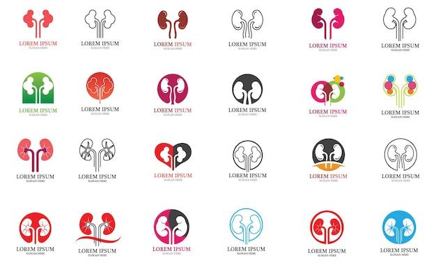 Plantilla de logotipo de diseño de illusrtation de vector de riñón