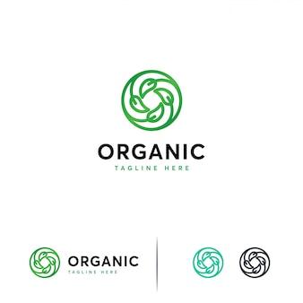 Plantilla de logotipo de hoja de círculo