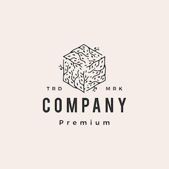 Plantilla de logotipo vintage de hipster hexagonal de caja de cubo de rama de árbol
