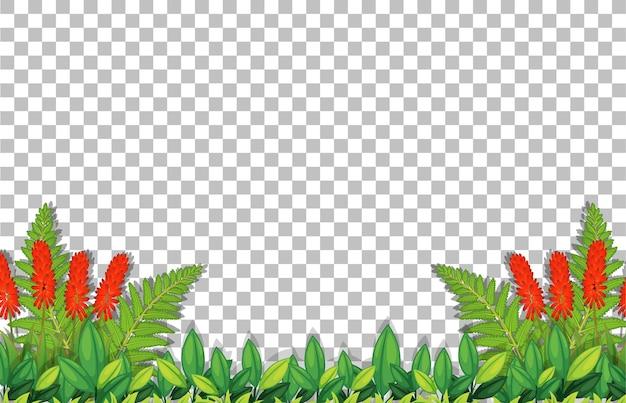 Plantilla de marco de flores y hojas en transparente