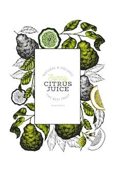 Plantilla de marco de rama de bergamota. marco de lima kaffir. dibujado a mano ilustración de frutas. fondo de cítricos vintage.