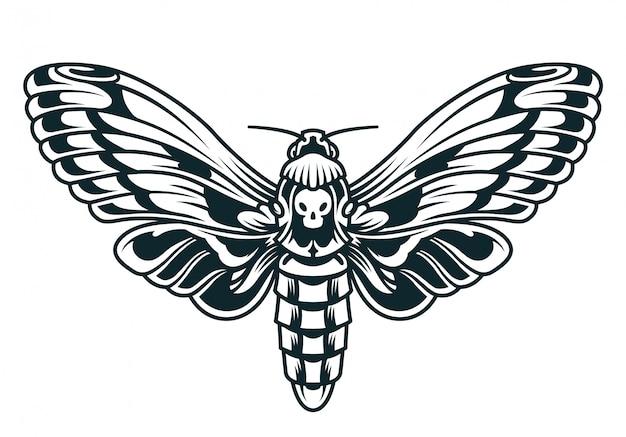 Plantilla de mariposa hermosa vintage
