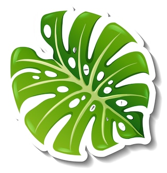 Una plantilla de pegatina con una hoja tropical aislada.