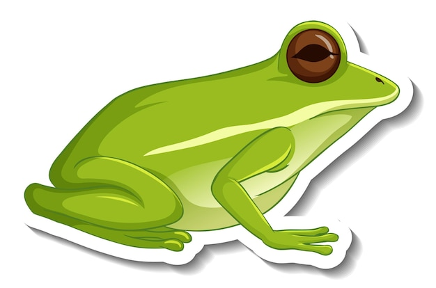 Una plantilla de pegatina con una rana verde aislada.