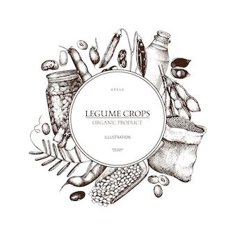 Plantilla de plantas frescas y orgánicas de granja. guirnalda de plantas de legumbres y cereales bosquejadas a mano