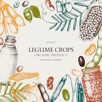 Plantilla de plantas frescas y orgánicas de granja. marco de plantas de legumbres y cereales bosquejado a mano