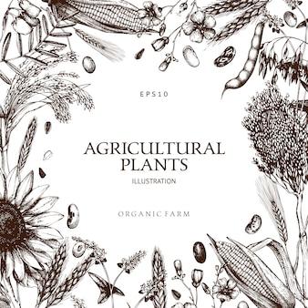 Plantilla de plantas frescas y orgánicas de granja