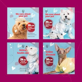 Plantilla de publicación de instagram veterinaria de mascotas