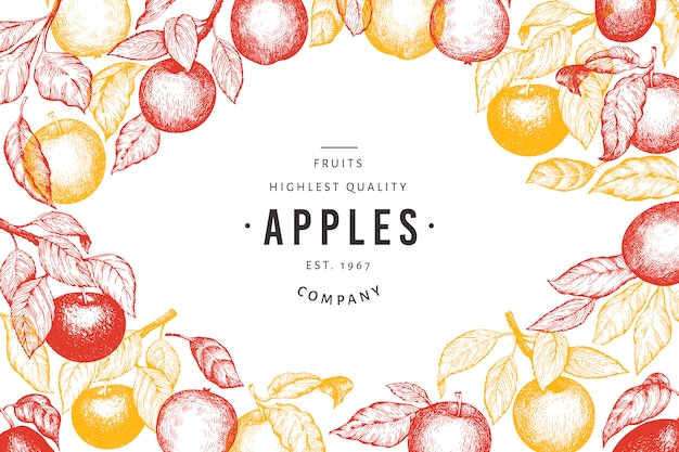 Plantilla de ramas de manzana. dibujado a mano ilustración de frutas de jardín.