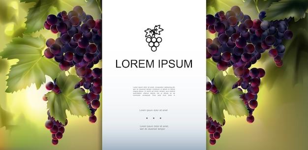 Plantilla realista de uvas frescas orgánicas