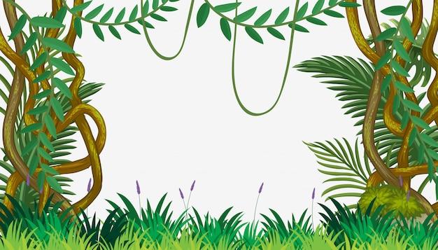 Una plantilla de la selva con vid