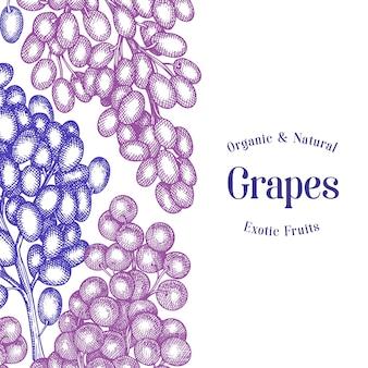 Plantilla de uva. dibujado a mano ilustración de baya de uva. bandera botánica retro estilo grabado.