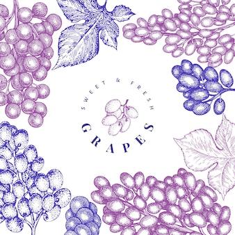 Plantilla de uva. dibujado a mano ilustración de baya de uva. botánico retro estilo grabado.