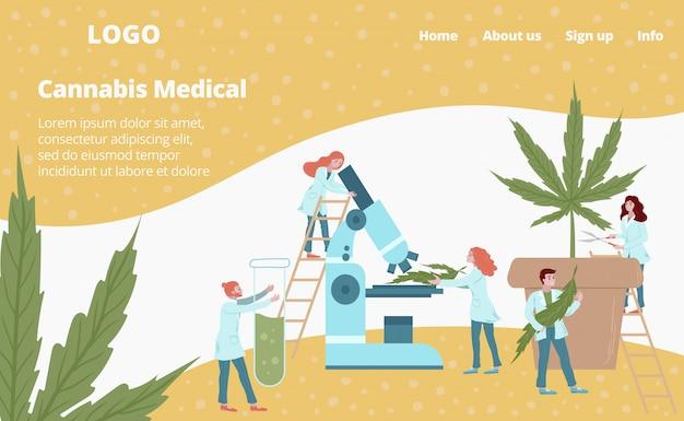 Plantilla web de medicamentos de laboratorio de planta de cannabis