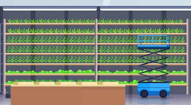 Plataformas elevadoras de tijeras hidráulicas en moderno cultivo hidropónico orgánico vertical granja interior agricultura concepto de sistema agrícola plantas verdes creciente industria horizontal