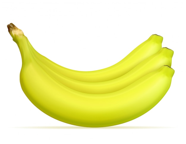 Plátano maduro amarillo y una ilustración vectorial verde