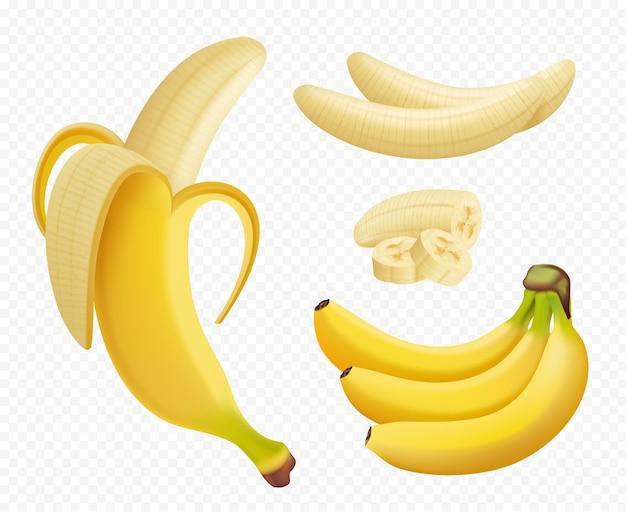 Plátano realista. ilustraciones de plantas de alimentos de frutas exóticas naturales saludables aisladas.