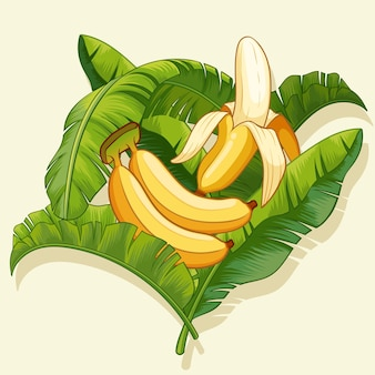 Plátanos y cáscara de plátano con diseño de hoja de plátano