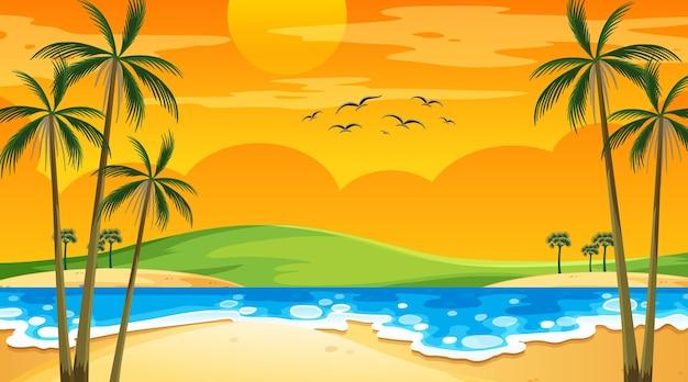 Playa al atardecer escena de paisaje con palmeras.