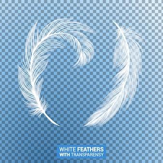 Plumas blancas esponjosas efecto transparente realista