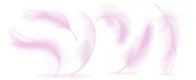 Plumas de color rosa