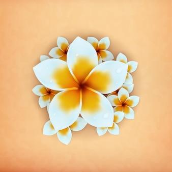 Plumeria de flor de hawaii realista 3d con fondo antiguo para elemento de diseño de banner de verano