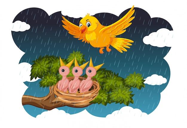 Pollitos y su ave madre en la naturaleza.