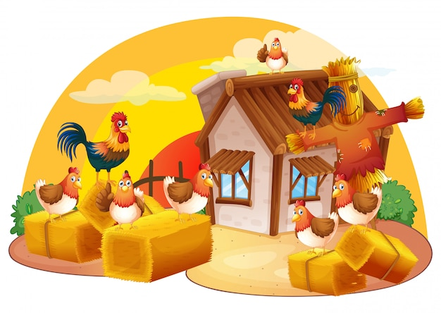 Pollos y espantapájaros en la granja.