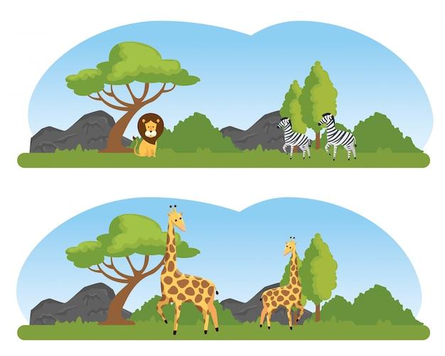 Pon animales salvajes en la reserva natural de safari