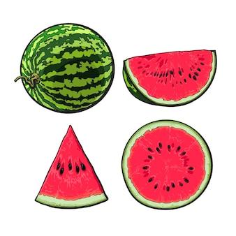 Porciones de una ilustración de sandía