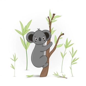 Postal de regalo con animales de dibujos animados koala. fondo floral decorativo con ramas y plantas.